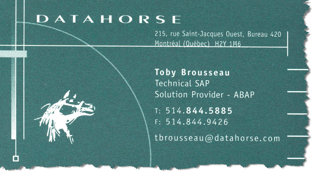 Datahorse - Technical Solution Provider (ABAP)